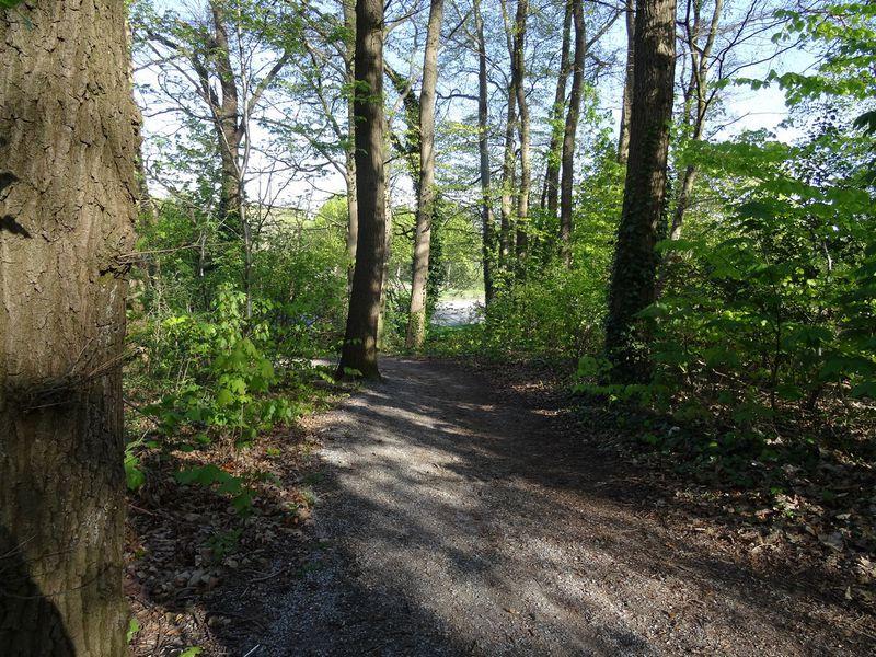 Wanderweg auf den Huckberg