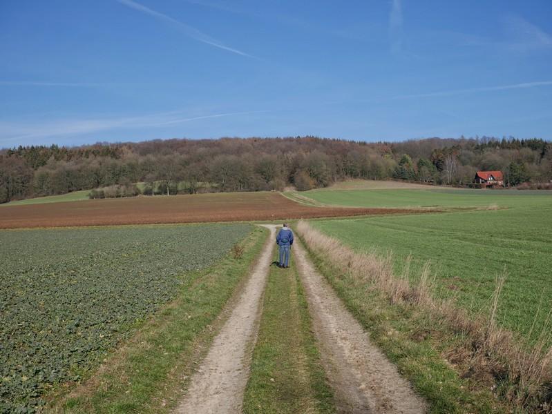 Wanderer auf dem Feldweg vor dem Hang