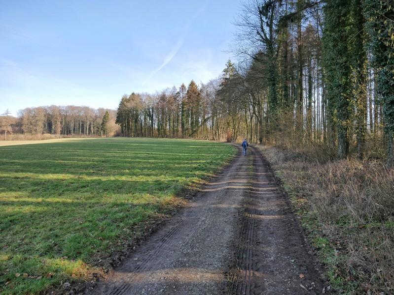 Feldweg mit Wanderer