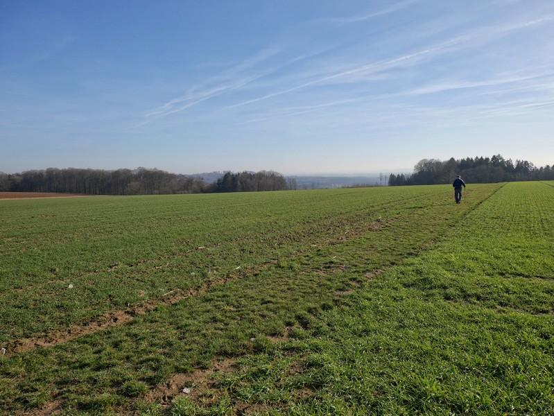 Wanderer auf Feld- und Wiesenweg
