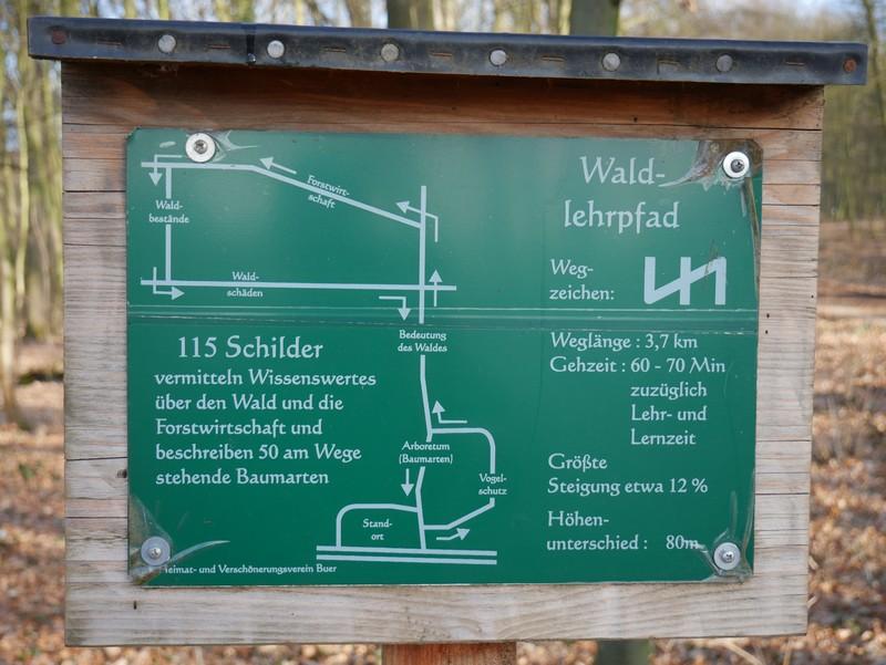 Schild mit Übersichtskarte des Waldlehrpfades