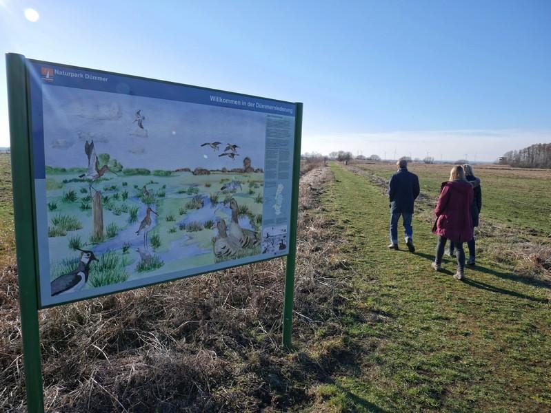 Info-Schautafel am Wegesrand auf dem Naturerlebnispfad Dümmer, im Hintergrund drei Wanderer.