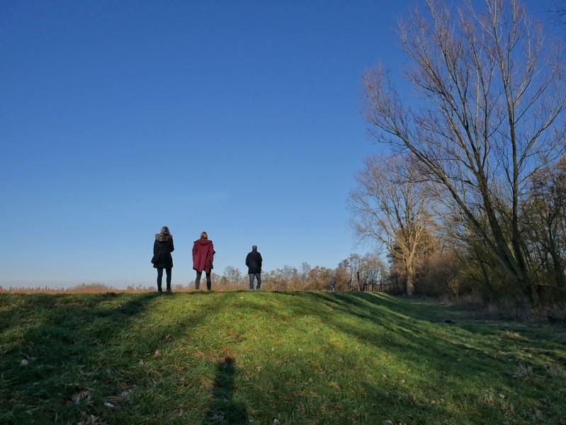Drei Wanderer auf dem Dümmerdeich