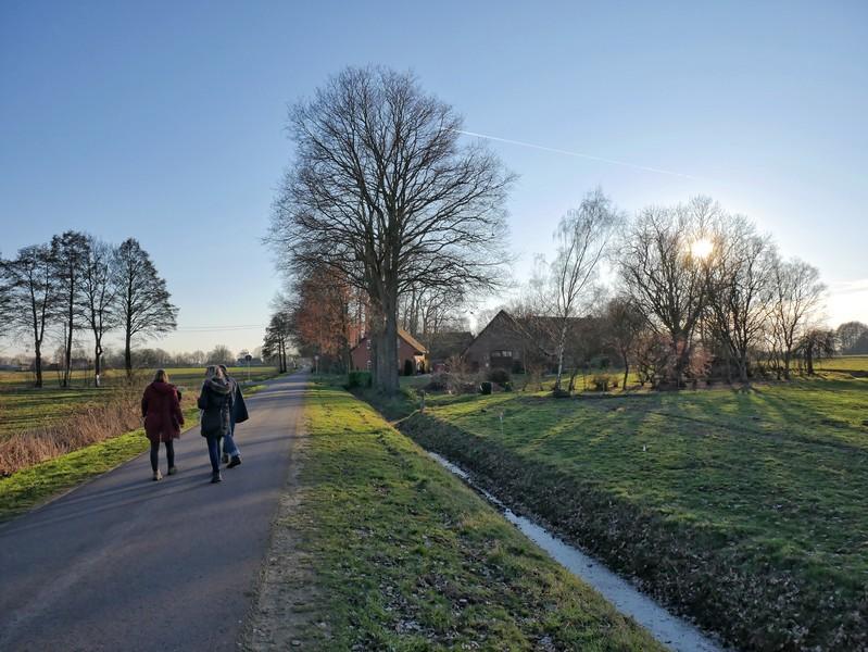 Kleine Straße mit drei Wanderern, im Hintergrund die Naturschutz-Station Dümmer-See