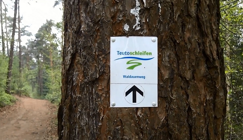 Schild Teutoschleife Waldauenweg