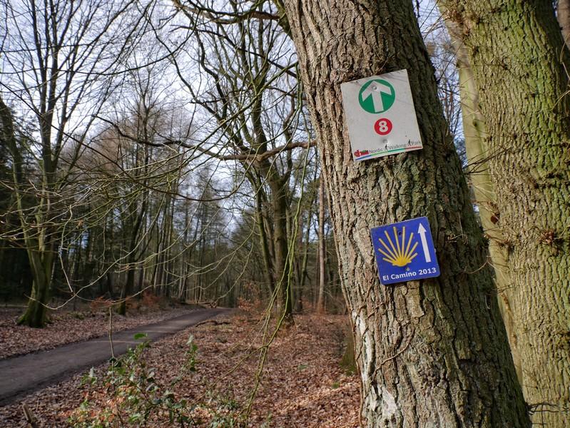 Hinweis-Schilder zum Jakobsweg und zur Nordic Walking Route Nr. 8