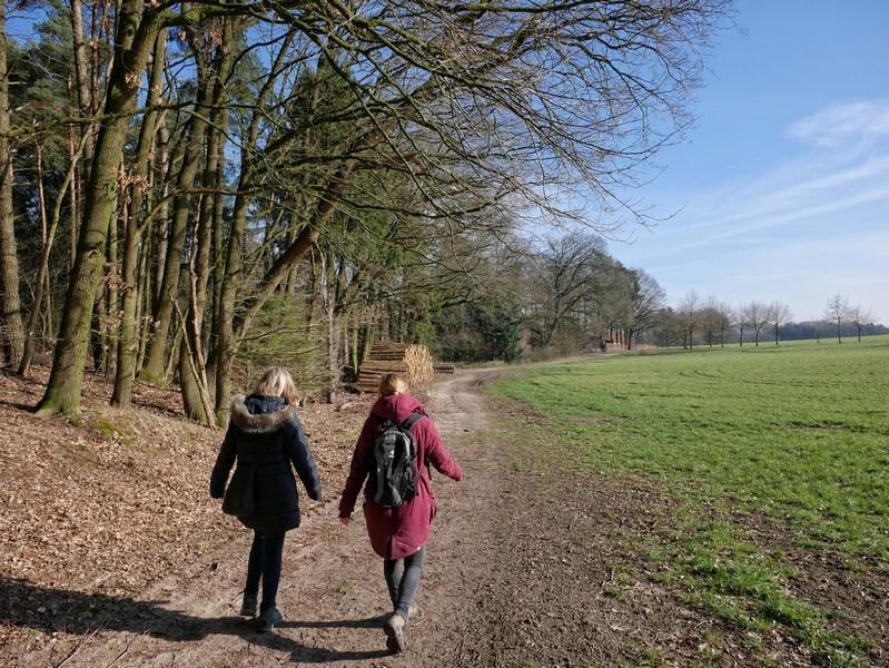 Zwei Wanderer auf dem Weg am Waldrand in Richtung Bexaddetal.