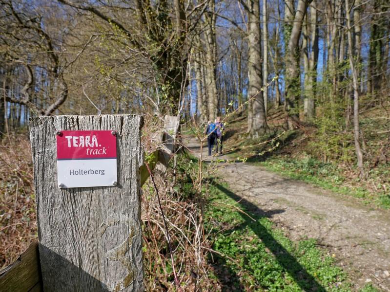 Im Vordergrund das Wegzeichen zum TERRA.track Holter Berg, daneben der Weg und verschwindend i Hintergrund zwei Wanderer