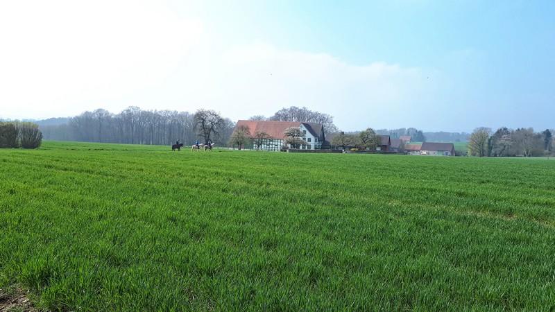 Das Bild zeigt im Vordergrund eine Wiese, im Hintergrund drei Reiter und einen Fachwerkhof.