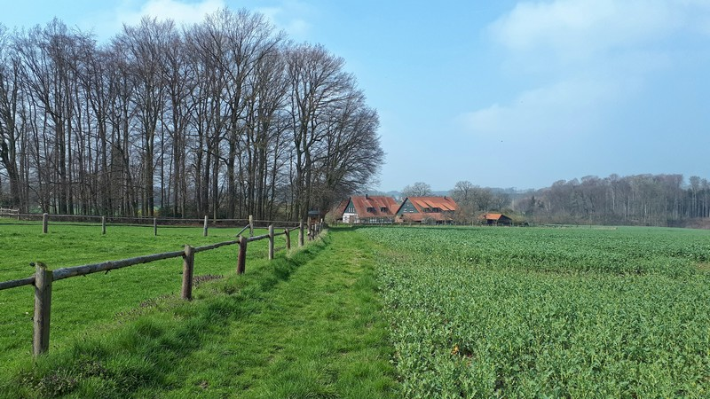 Das Bild zeigt einen Wiesenweg, links einen Zaun und im Hintergrund einen Hof.