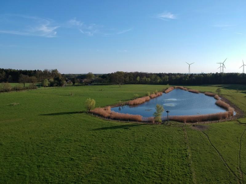 Das Bild zeigt eine Luftaufnahme von dem kleinen See, eingebettet in eine grüne Wiese. Im Hintergrund Wald und Windräder.
