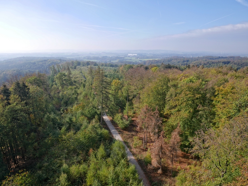 das Bild zeigt den Ausblick vom Aussichtsturm Ottoshöhe und unter anderem den Weg, über den der TERRA.track Drei Türme verläuft.