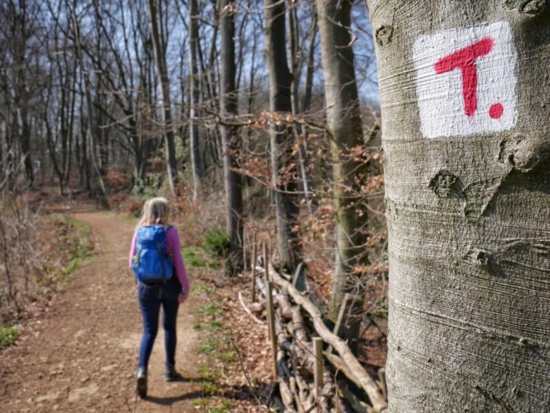 Wegmarkierung der TERRA.tracks: Das rote T auf weißem Grund, im Hintergrund wandert Meike