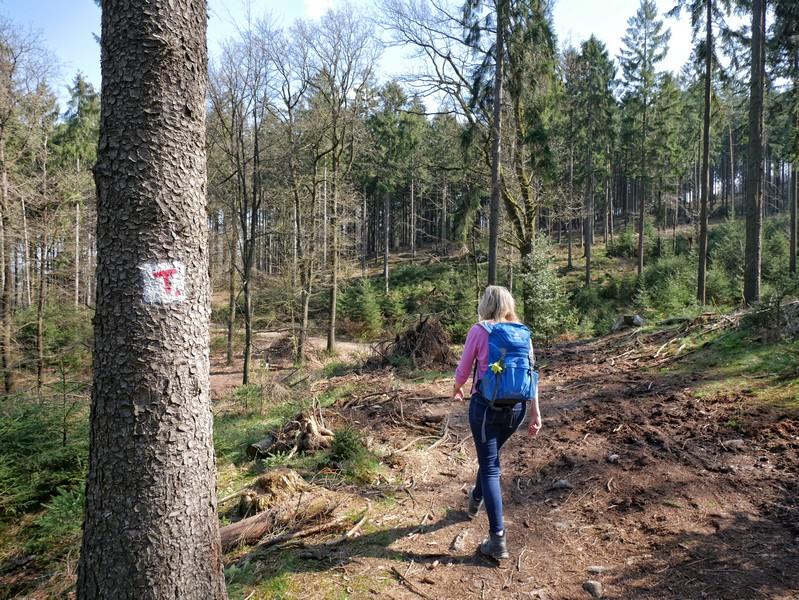 Meike wandert auf dem TERRA.track Hüggelzwerge auf einem schmaleren Pfad, im Vordergrund die Wegmarkeirung