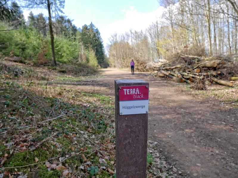 Im Vordergrund die Wegmarkeirung, in weiterer Entfernung Meike auf dem TERRA.track Hüggelzwerge