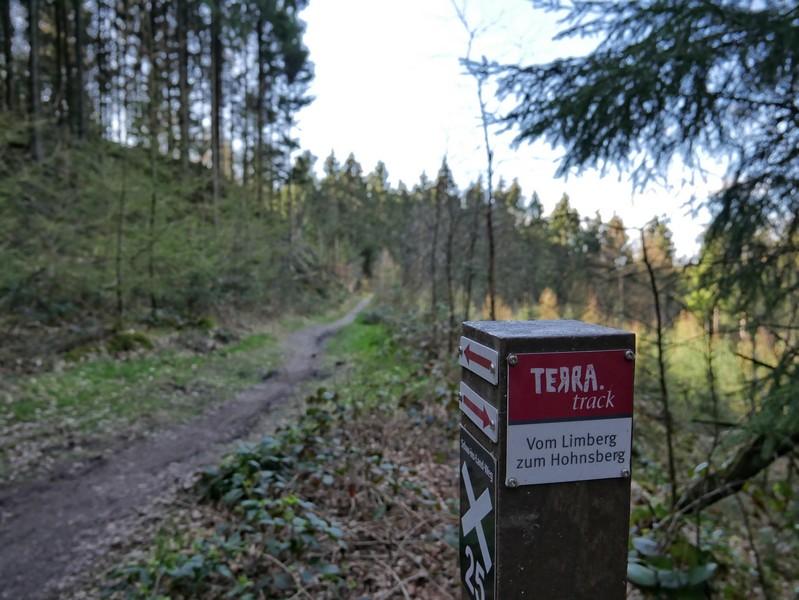 Wegmarkierung TERRA.track Vom Limberg zum Hohnsberg