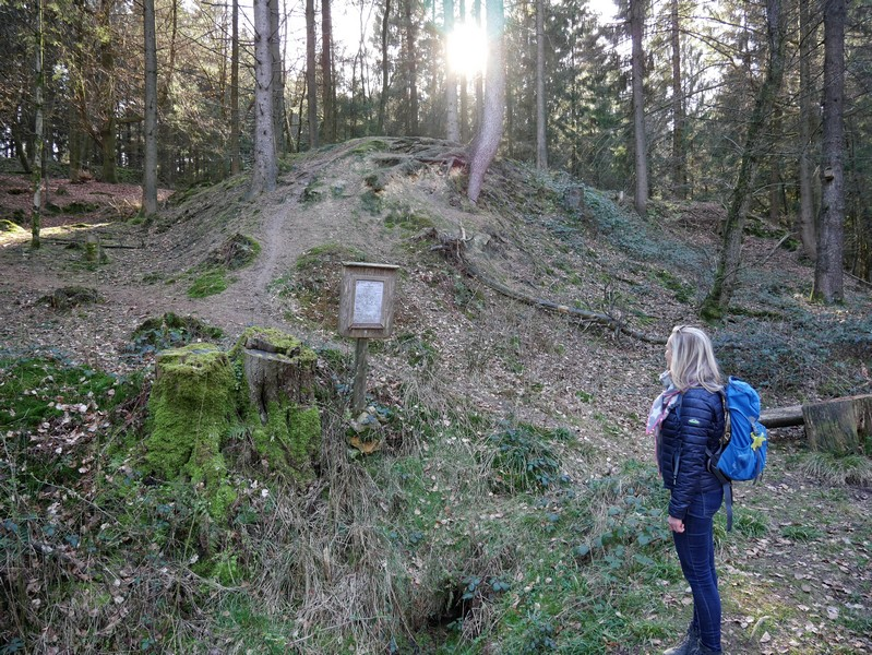 Am Quellebereich der Düte: Meike studiert das Infoschild, durch die Bäume scheint die Sonne auf die Quelle.