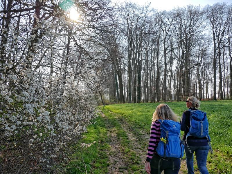 Das Bild zeigt Meike und Svenja, die zwischen Bäumen und einem Feld wandern.