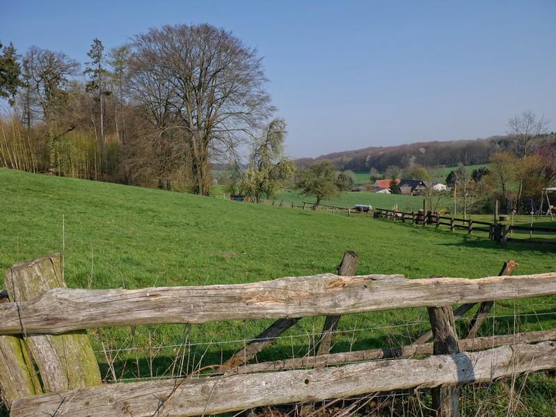 Das Bild zeigt die grünen Hügel des Zittertals.