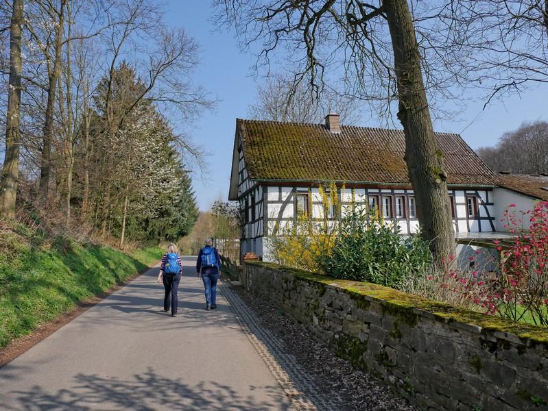 Das Bild zeigt ein gepflegtes Fachwerkhaus an einer mit Moos bewachsenen Mauer. Auf der Straße wandern Meike und Svenja.