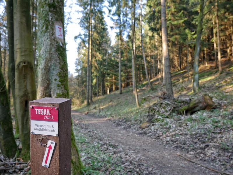 Das Bild zeigt einen schmalen Weg und im Vordergrund die Markierung für den TERRA.track Varusturm und Mathildenruh.