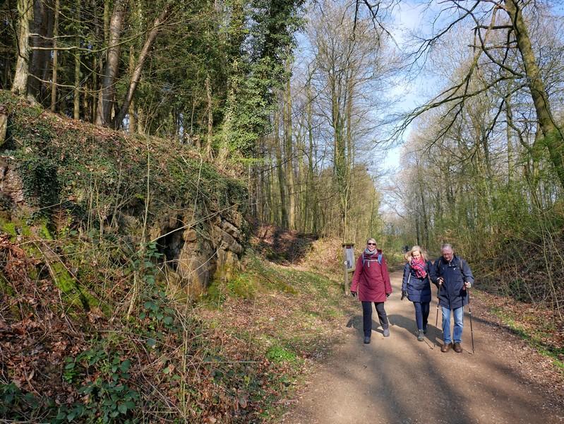 Das Bild zeigt drei Wanderer auf dem TERRA.track Hüggelrundweg.