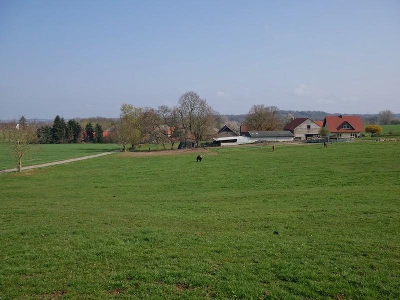 Das Bild zeigt den Ausblick vom TERRA.track Hüggelrundweg auf eine Weide, im Hintergrund ist ein Bauernhof zu sehen.