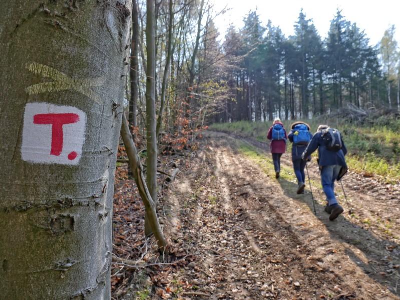 Das Bild zeigt im Vordergrund die rotweiße Wegmarkierung und im Hintergrund drei Wanderer beim Anstieg.