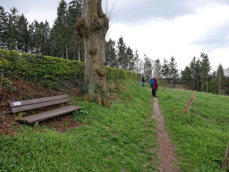Das Bild zeigt zwei Wanderer auf einem engen Pfad entlang einer Hecke.