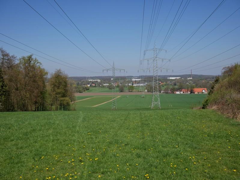 Das Bild zeigt den Blick über die Rodelwiese am Sandforter Berg.