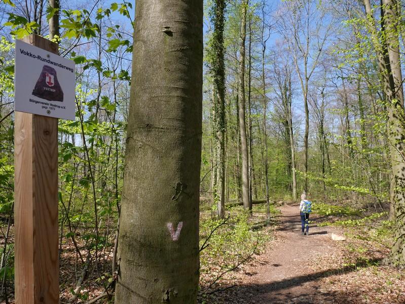 Das Bild zeigt im Vordergrund die Wegmarkierung Vokko Rundwanderweg  und im Hintergrund Meike auf dem Weg.