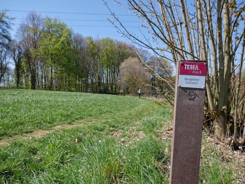 das Bild zeigt den Wegweiser TERRA.track Borgloher Schweiz auf einer grünen Wiese.