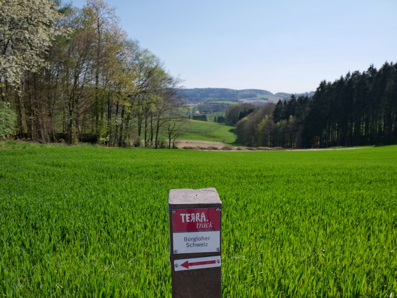 das Bild zeigt den Wegweiser des TERRA.tracks Borgloher Schweiz und dahinter eine Aussicht auf das hügelige Umland.