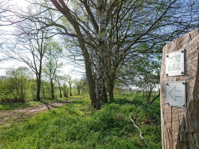 Das Bild zeigt einen der Wegweiser bei diesem Rundwanderweg durch das Grasmoor in Achmer.