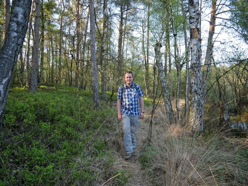 Das Bild zeigt den Wandervogel au dem kleinen Seitenpfad im Moor.