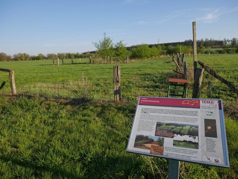 Das Bild zeigt eine der sieben Info-Tafeln auf dem TERRA.track Grasmoor in Achmer.