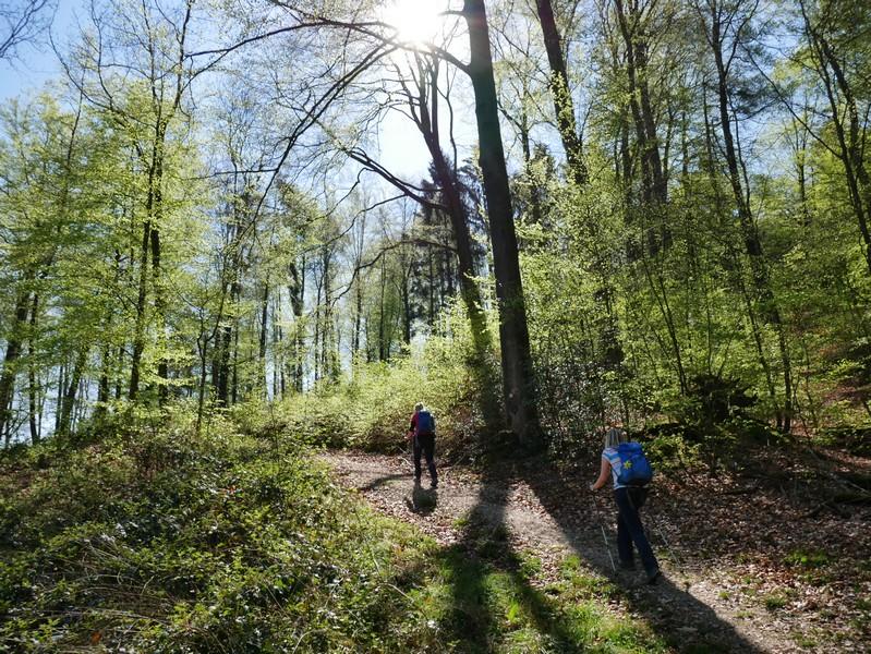 Das Bild zeigt Meike und Svenja auf dem DiVa Walk, der hier tiefer in den Wald führt.