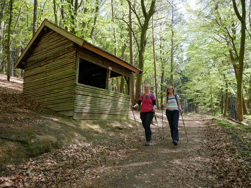 Das Bild zeigt Meike und Svenja auf einem breiteren Wanderweg im Wald.