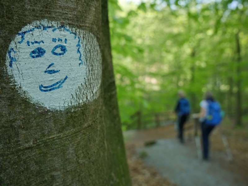 Das Bild zeigt ein lächelndes Gesicht, das auf einen der Bäume am Wegesrand gemalt ist.