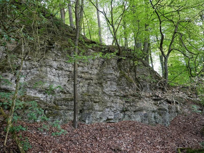 Das Bild zeigt die Wand aus Schilfsandstein.