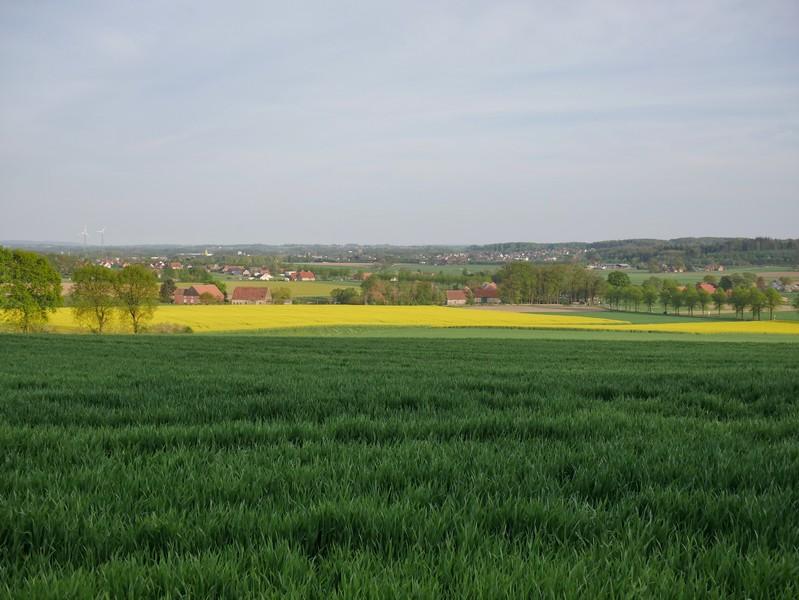 Blick vom Ehrenmal in Richtung Tal