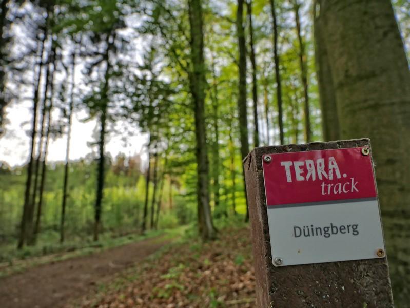 Das Bild zeigt eine Wegmarkierung auf dem TERRA.track Düingberg.