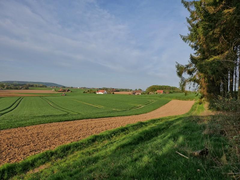 Das Bild zeigt weite Felder, die teils noch grün und teils frisch umgegraben sind. Der Himmel ist blau, im Hintergrund einige Häuser.