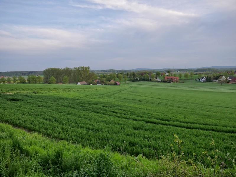 Das Bild zeigt weite grüne Felder und im Hintergrund vereinzelt Häuser.