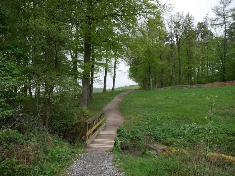Das Bild zeigt die erste Brücke über den Zwickenbach, die wir auf dieser Wanderung antreffen.