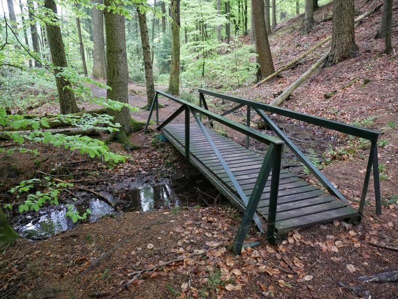 das Bild zeigt eine Holzbrücke, die über den Zwickenbach führt.