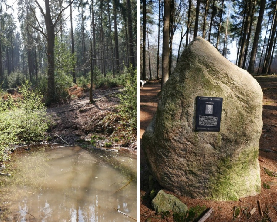 Zwei Bilder: Links der kleine Teich im Sonnenlicht, rechts der Bödigestein mit einem Foto von Dr. Nikolaus Bödige nebst Inschrift.