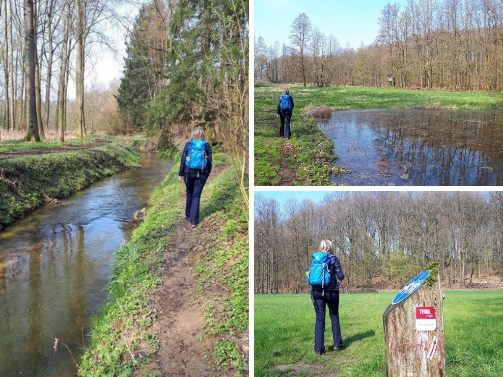 Das Bild zeigt eine Collage aus drei Fotos. Zu sehen ist die Waremnau, ein kleiner Weiher und das Schild des TERRA track Königsbrück.