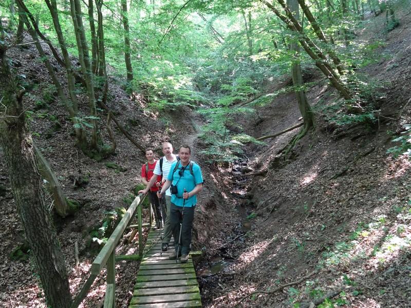Das Bild zeigt drei Wanderer auf einer kleinen Brücke über den Kabeiner Bach auf dem Moslesteig.