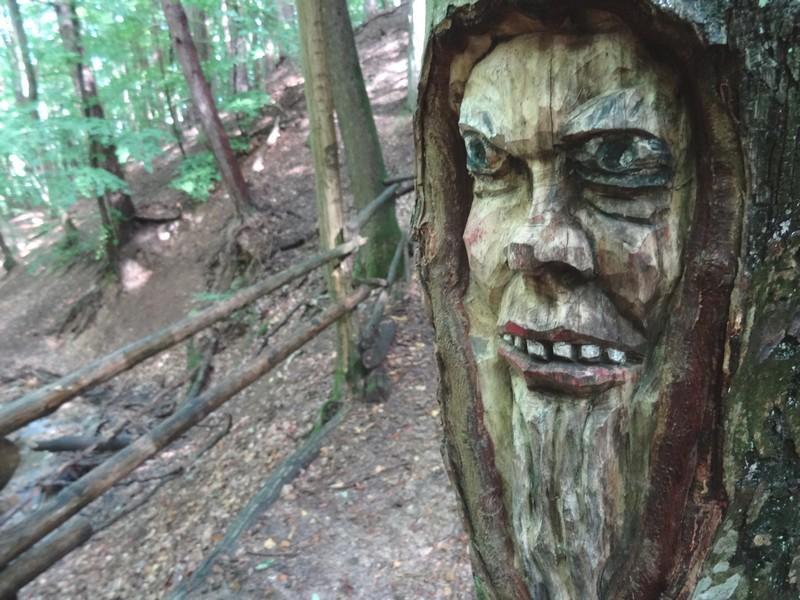 Das Bild zeigt einen finster drein blickenden, in den Baum geschnitzten Baumgeist.